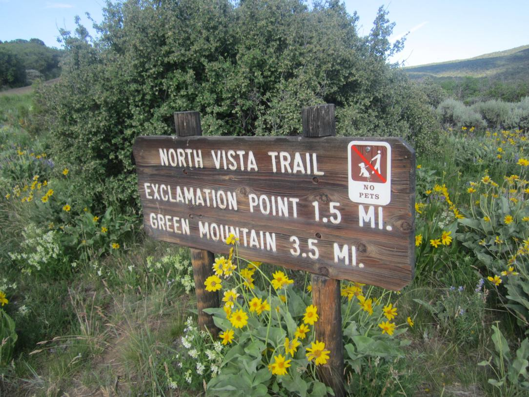 The trail head is located just behind the ranger station