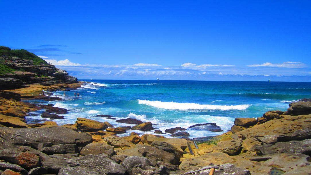 A view from the Coastal Walk from Bondi to Coogee Beach