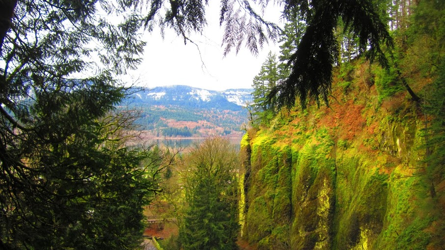 The view of the Columbia River Gorge from the Benson Bridge at Multnomah Falls