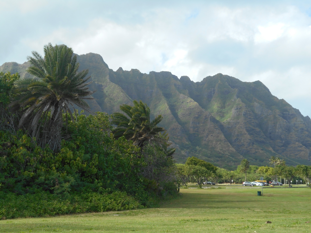 The Ko'olau Mountains just across the street from the beach